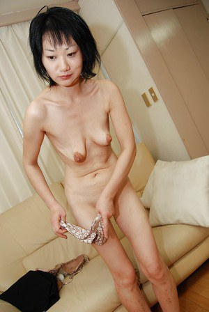 Asian gallery tit and
